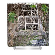 Tangle Of Memories-clounleharde School Shower Curtain
