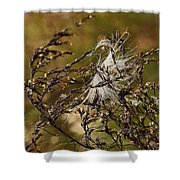 Tangled Puff Shower Curtain