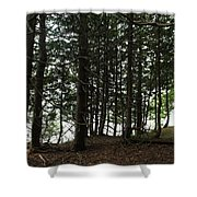 Tangled Trees Shower Curtain