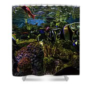 Tanked 1 Shower Curtain