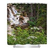 Tanner Flat Falls Shower Curtain