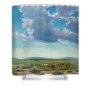 Taos Mustangs Shower Curtain