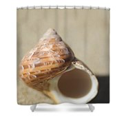 Tapestry Turban Seashell Shower Curtain