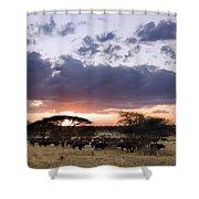 Tarangire Sunset Shower Curtain