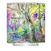 Tarbes 01 Shower Curtain