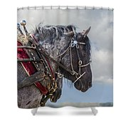 Task At Hand Shower Curtain