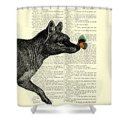Tasmanian Tiger And Orange Butterfly Antique Illustration On Dictionary Page Shower Curtain