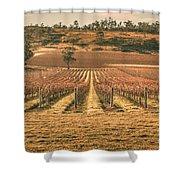 Tasmanian Winery In Winter Shower Curtain