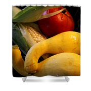 Taste Of Summer Shower Curtain by Karen Wiles