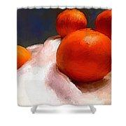 Tasting Citrus Shower Curtain