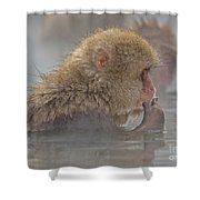 Tasty Shower Curtain