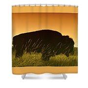 Tatanka Shower Curtain