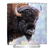 Tatanka Portrait Shower Curtain