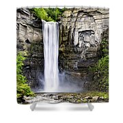 Taughannock Falls Gorge Shower Curtain