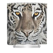 Taupe Tiger Shower Curtain