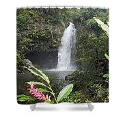 Taveuni, Tavoro Waterfall Shower Curtain