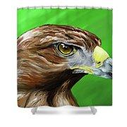 Tawny Eagle Shower Curtain