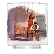 Taxidermist Shower Curtain