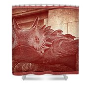Tcu Horned Frog Red Shower Curtain