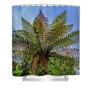 Te Puia Palm Tree Shower Curtain