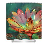 Teal And Peach Waterlilies Shower Curtain