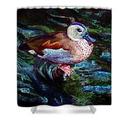 Teal Duck Of Naples Shower Curtain