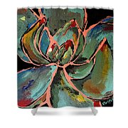 Teal Pink Succulent Shower Curtain