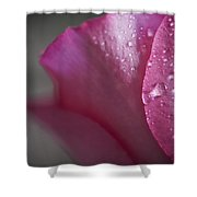 Tears And Petals Shower Curtain