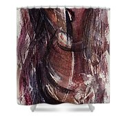 Tears In Silence Shower Curtain