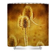 Teasel Group Shower Curtain