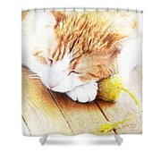 Teddy And His Toy Shower Curtain