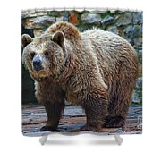 Teddy Bear Alive Shower Curtain
