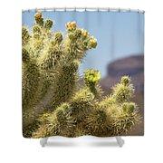 Teddy Bear Cholla Cactus With Flower Shower Curtain