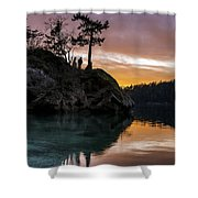 Teddy Bear Cove Shower Curtain