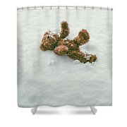 Teddy Bear In Snow Shower Curtain