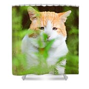 Teddy In The Garden Shower Curtain