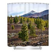 Teide Shower Curtain