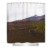 Teide Nr 13 Shower Curtain