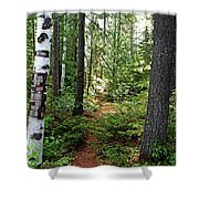 Temagami Island Forest I Shower Curtain