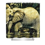 Tembo Shower Curtain