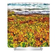 Temecula Vineyard Shower Curtain