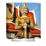 Temple Guardian Shower Curtain