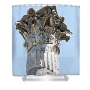 Temple Of Ceres Shower Curtain