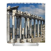 Temple Of Trajan View 3 Shower Curtain