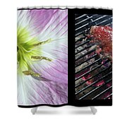Temptation 1 Shower Curtain by James W Johnson