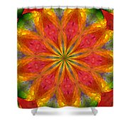 Ten Minute Art 090610-a Shower Curtain