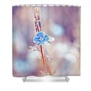 Tender Forget-me-not Flower Shower Curtain