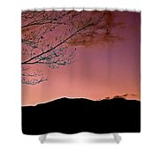 Tender Is The Night 3 Shower Curtain