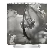 Tenderness Shower Curtain by Laurie Search
