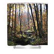 Tennessee Falls Shower Curtain